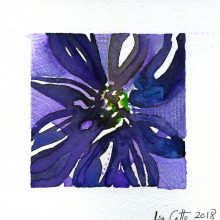 Fading Aster - purple 5 x 5 inches Original Watercolor on watercolor paper 2018