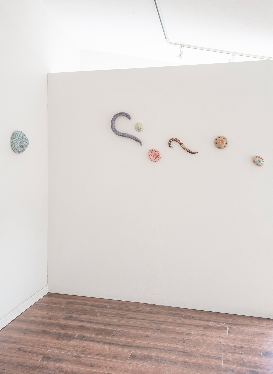 Installation view (Eva Kwong)